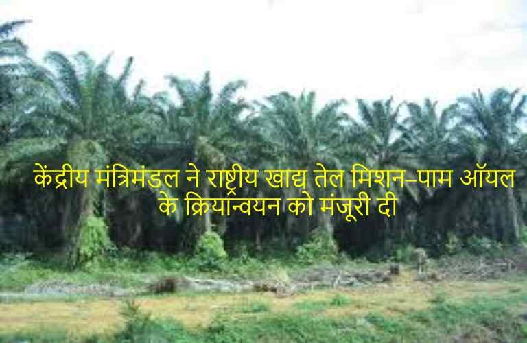 Palm Agriculture Scheme